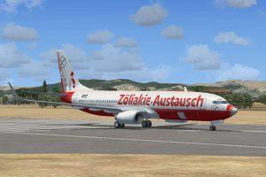 Glutenfrei Reisen - Flugzeug