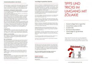 Link auf den Flyer als PDF