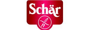 300×100-Schaer